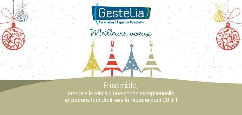 voeux2016-Gestelia-RESEAU